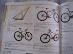 cyclesports.jpg
